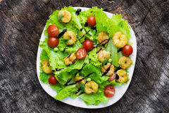 Shrimp salad with cherry tomatoes Royalty Free Stock Image