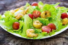 Shrimp salad with cherry tomatoes Stock Images