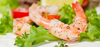Shrimp with salad Royalty Free Stock Image