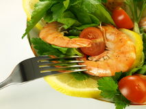 Shrimp salad, closeup Stock Photography