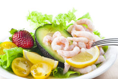 Shrimp Salad. Gluten and lactose free shrimp salad. New version royalty free stock images