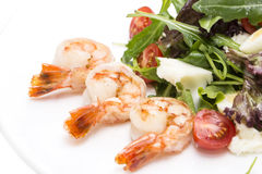 Shrimp salad Royalty Free Stock Photography
