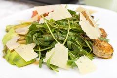 Shrimp salad Stock Images
