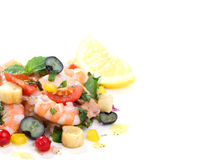 Shrimp salad isolated on white. Shrimp salad with berries isolated on white Royalty Free Stock Photos