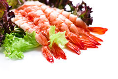 Shrimp with salad leaves on white background Royalty Free Stock Photos