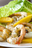 Shrimp Salad with Mango. Healthy salad of shrimp or prawns, with mango, romaine lettuce and dill Royalty Free Stock Image