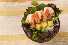 Shrimp with salad and mango in coconut Royalty Free Stock Image