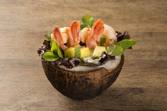 Shrimp with salad and mango in coconut Stock Photos