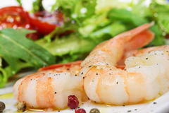 Shrimp and salad Stock Photo