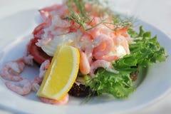 Shrimp salad sandwich Stock Image