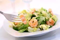 Shrimp salad - swallow DOF-. Shrimp salad - swallow DOF - the shrimp in the fork is focus stock photo