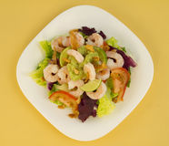 Shrimp Salad Top View. Shrimp salad seen from above with avocado paste, fried onions, tomato and purple cabbage. studio lights and 17-50mm F2.8 lens Royalty Free Stock Photo