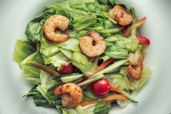 Shrimp salad in a white plate on a gray background. Food Concept Stock Photos