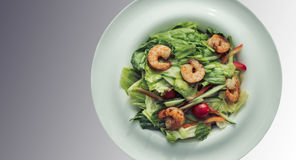 Shrimp salad in a white plate on a gray background. Food Concept Stock Image