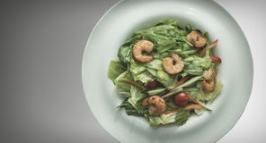 Shrimp salad in a white plate on a gray background. Food Concept Stock Images
