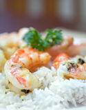Shrimp Scampi. Served over a bed of white rice Royalty Free Stock Photos