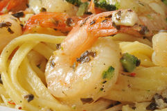 Shrimp Scampi and Linguine Royalty Free Stock Images