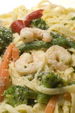 Shrimp scampi primavera. With linguine broccoli vegetables sprinkled with parmesan cheese Stock Photography