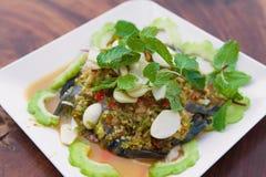 Shrimp sea food. On dish royalty free stock photo