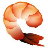 Shrimp Vector. Sea Food Fried Shrimp Vector Illustration Stock Photos