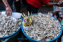 Shrimp sellers in traditional markets Badung sold the shrimp on the tray which was previously served by a canang as a blessing stock image