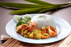 Shrimp serve with rice Stock Photo