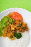 Shrimp serve with rice asia food. Royalty Free Stock Photos