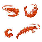 Shrimp set. Vector. Illustration. This is file of EPS8 format Stock Images