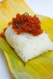 Shrimp and shred coconut on sticky rice. Stock Image