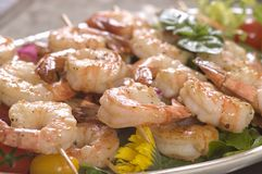 Shrimp on a skewer Stock Photography