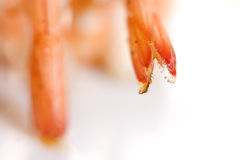 Shrimp skewers Royalty Free Stock Image