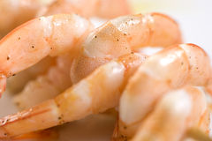 Shrimp skewers. On white background Royalty Free Stock Images