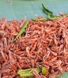 Shrimp small Royalty Free Stock Photo
