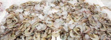 Shrimp sold in market. Stock Photos