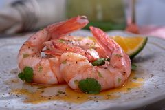 Butter shrimp with coriander royalty free stock photos