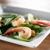 Shrimp spinach salad Royalty Free Stock Photo