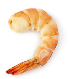 Shrimp tail Stock Photography