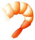 Shrimp tail on white Royalty Free Stock Images