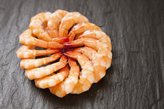 Shrimp. Tasty and appetizing boiled shrimp Royalty Free Stock Photo