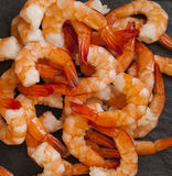 Shrimp royalty free stock image