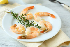 Shrimp and thyme on plate Royalty Free Stock Images