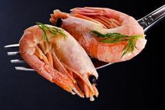 Shrimp time Royalty Free Stock Photo