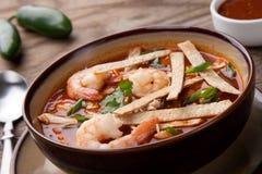 Shrimp Tortilla Soup. Bowl of hot delicious shrimp tortilla soup garnished with green onion, fresh cilantro, and salsa Stock Image