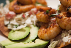 Shrimp Tostadas Royalty Free Stock Photography