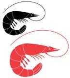 Shrimp. Vector illustration (EPS 10 Stock Images
