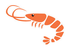 Shrimp vector illustration Stock Images