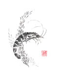 Shrimp and weed Japanese style original sumi-e ink painting. Royalty Free Stock Photos
