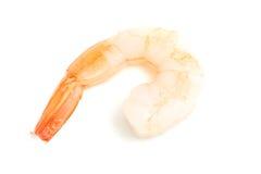 Shrimp on white. Photo of isolated shrimp on white Royalty Free Stock Photo