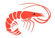 Shrimp. On white background vector Stock Image