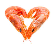 Shrimp on white with heart shape Stock Images
